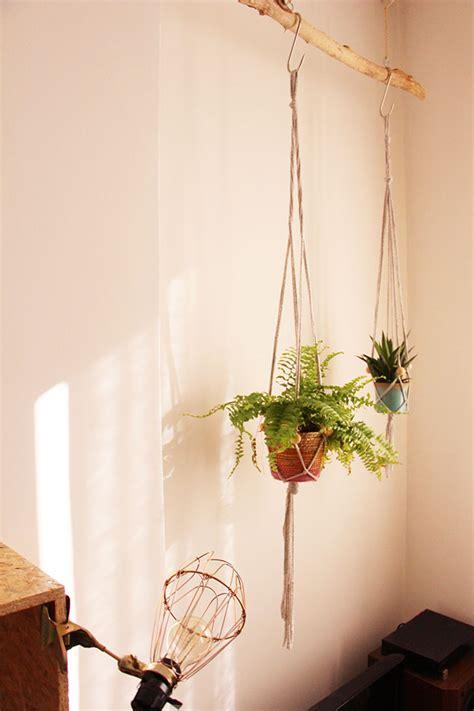 astuce de cuisine mes plantes suspendues blueberry home