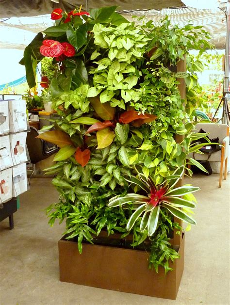 plants  grow  vertical garden