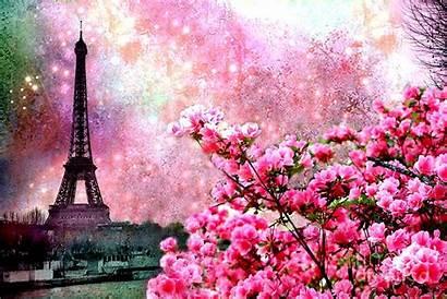 Paris Pink Spring Nature Dreamy Twinkle Flowers