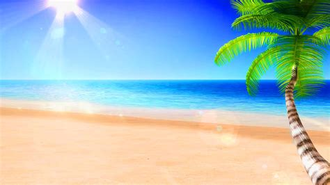 tropical beach wallpapers pictures images