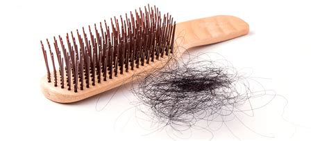 hair shedding in the fall the hello doctor