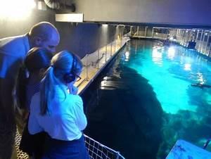 Fische Aquarium Hamburg : im tropen aquarium hagenbeck mit harry und sally ~ Lizthompson.info Haus und Dekorationen