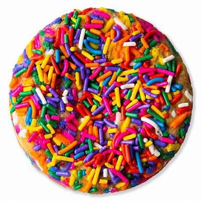 Rainbow Sprinkle Celebration Sweet Cookie