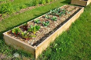 Building Raised Bed Gardens  Step