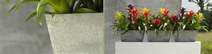 Schöne übertöpfe Für Drinnen : pflanzgef e bert pfe vasen schalen f r innen und au en ~ Watch28wear.com Haus und Dekorationen