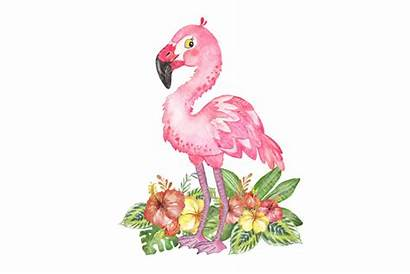 Flamingo Clipart Watercolor Tropical Flowers Painting Thehungryjpeg