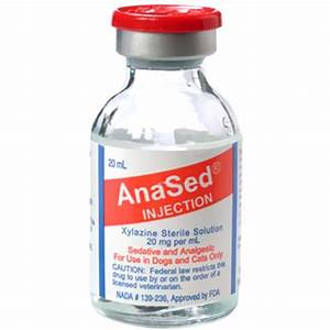 Anased Inj Sa Xylazine 20mg  Ml