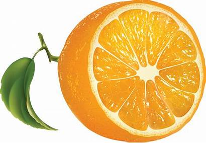 Orange Fruits Icon Frutas Clipart Transparent Clip