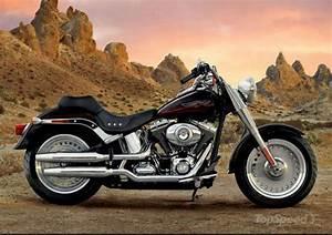 Harley Fat Boy : 2002 harley davidson flstf fat boy moto zombdrive com ~ Medecine-chirurgie-esthetiques.com Avis de Voitures