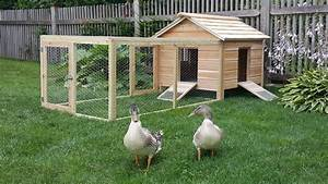 Hand Crafted Cedar Duck Hutch / Chicken Coop by Lyons