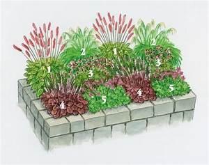 Blumen Für Schattige Plätze : die besten 25 pflanzen schatten ideen auf pinterest ~ Michelbontemps.com Haus und Dekorationen