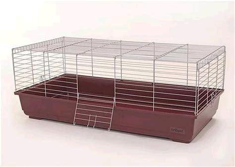 Gabbia Forum - leggi argomento gabbia ratti