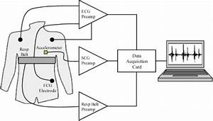 Extracting Respiratory Information From Seismocardiogram