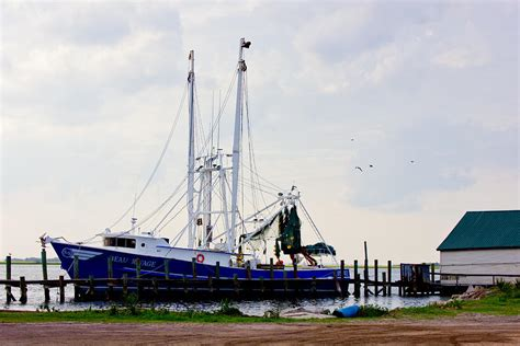 American Shrimp Boats For Sale by Shrimp Boat At Dock Photograph By Barry Jones