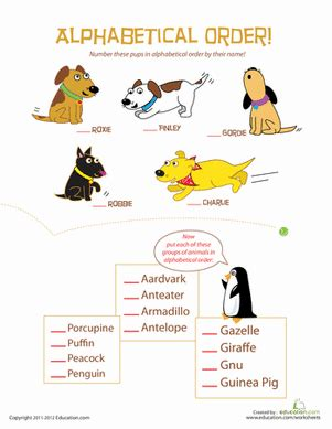 animal alphabetical order worksheet educationcom