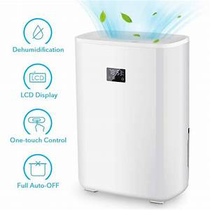 Top 10 Best Mini Dehumidifiers Buying Guide   Updated 2019