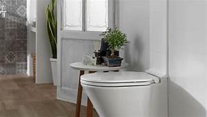 Décorer Ses Toilettes : decoration de toilette 20171005051716 ~ Premium-room.com Idées de Décoration