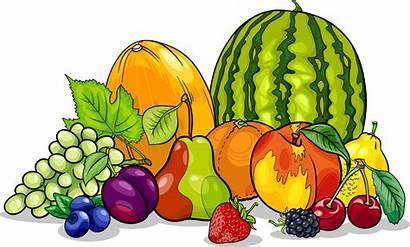 Cartoon Clipart Clip Fruits Minerals Nutritious Illustration