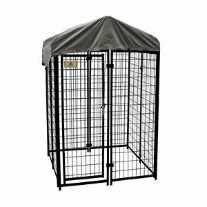 kennelmaster 4 ft x 4 ft x 6 ft welded wire dog fence With wire fence dog kennel