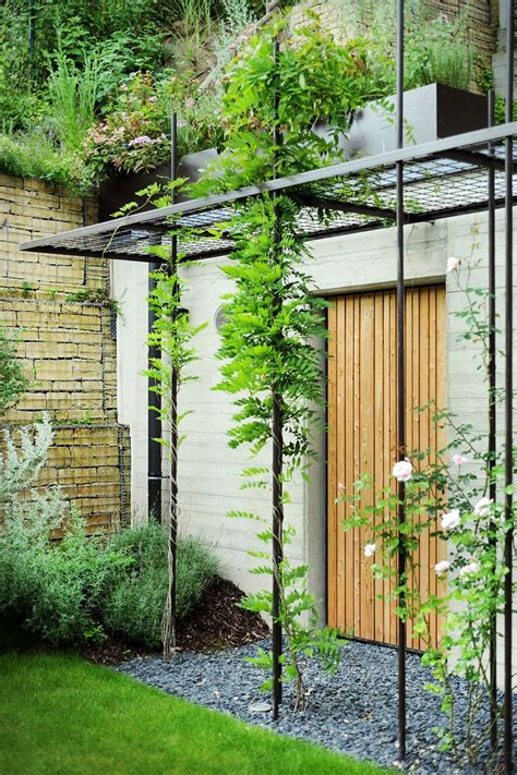 Metal Trellis by Best 25 Metal Trellis Ideas Only On Wall