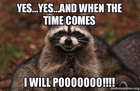 Evil Raccoon Meme - yes yes and when the time comes i will pooooooo evil plotting raccoon make a meme