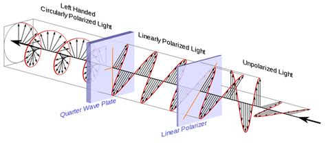 Circularly Polarized Light by Polarization For 3d