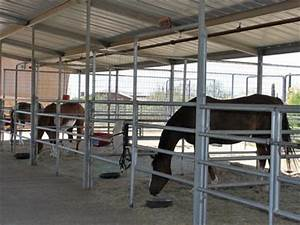 our facility camelot therapeutic horsemanship With covered horse stalls