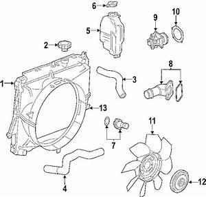 Chevrolet Colorado Radiator Coolant Hose  Lower   2 8  U0026 2