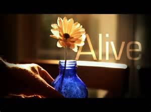Alive | Restoration Videos | WorshipHouse Media