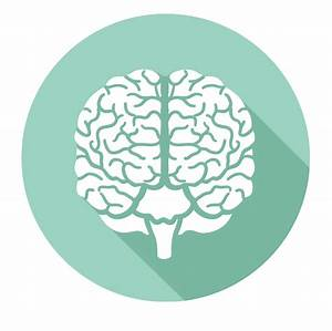 brain-icon – Applied Movement Neurology