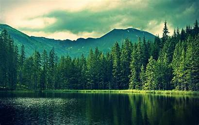 Landscape Water Trees Hill Pond Desktop Wallpapers