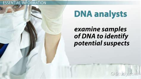 Dna Analyst Dna Analyst Job Description Duties And Requirements