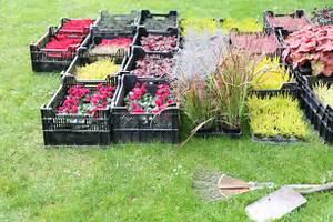 Alpenveilchen Im Garten : alpenveilchen pflanzen so machen sie alles richtig ~ Orissabook.com Haus und Dekorationen