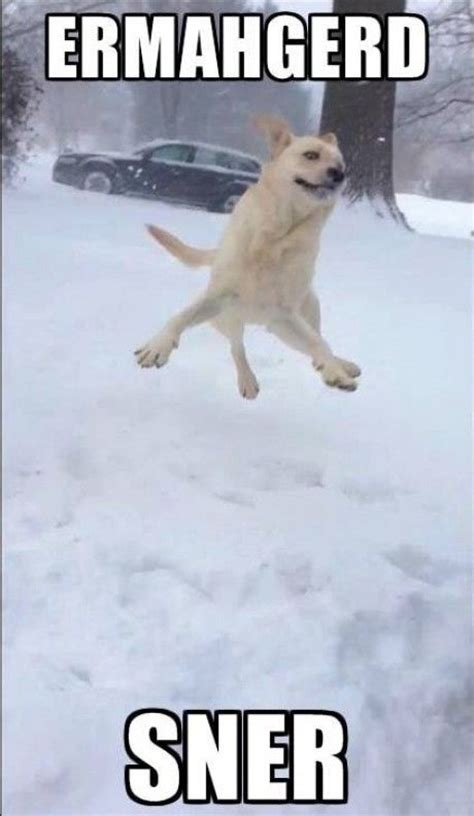 Snow Memes - 25 best ideas about snow meme on pinterest picture of snow smile meme and funny snow quotes