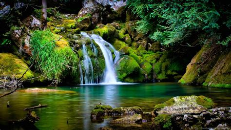 Nature Wallpapers 1600x900  Wallpaper Cave