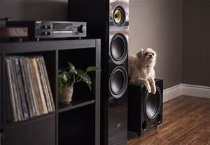 How To Set The Phase And Crossover Frequency On Your Subwoofer