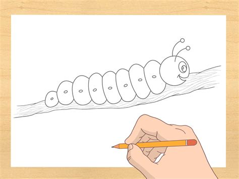 How To Draw A Caterpillar 7 Steps (with Pictures) Wikihow