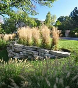 Garten Pflanzen : winterharte pflanzen im garten gestaltungsideen mit pampasgras ~ Eleganceandgraceweddings.com Haus und Dekorationen