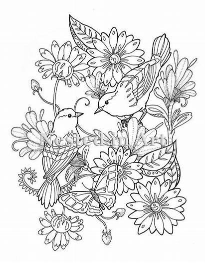 Coloring Birds Adult Bird Kleurplaat Floral Volwassen