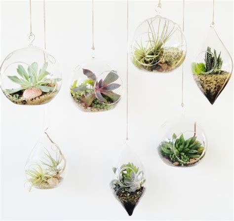 pcsset glass terrarium kithanging candle holders