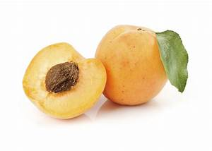 Planting Apricot Pits: Information On Growing Apricots ...