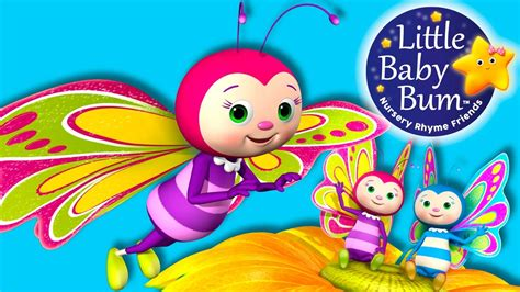 Song Butterfly Little Baby Bum Butterfly Song Nursery Rhymes For