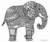 Elephant Coloring Pages Printable Sheet Adult Cool2bkids Outline Whitesbelfast Divine Imwithphil sketch template
