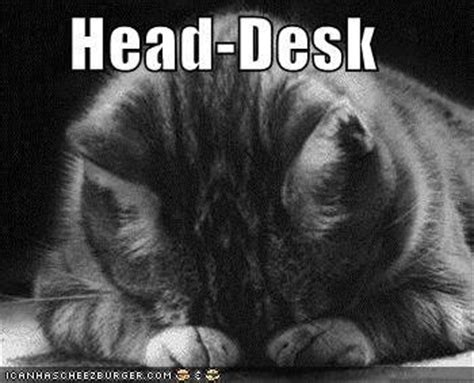 Head Desk Meme - head desk meme 28 images digital strategist archives lynette radio head desk meme generator