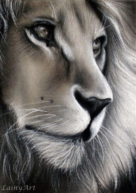 chalk  charcoal drawing   lion day
