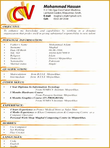 Different Resume Formats by 9 Best Resume Formats Free Sles Exles Format