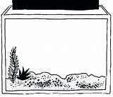 Aquarium Clipart Colouring sketch template