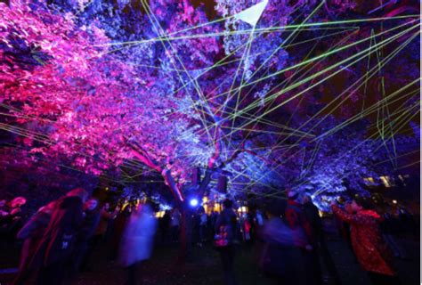 light city baltimore 2017 what not to miss at light city 2017 baltimore magazine