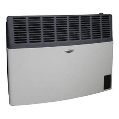 home depot direct catalog ashley hearth products 17 000 btu lp gas direct vent heater agdv20l the home depot