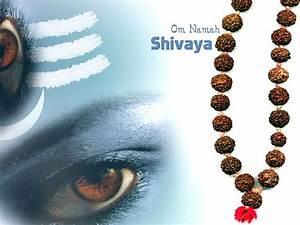 Jai Shiv Shankar Krishna HD Images,Bhagwan Shiv Shankar ...